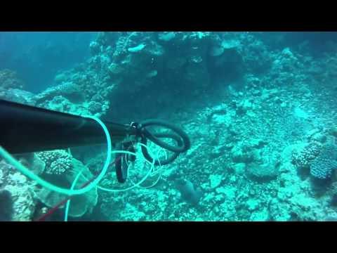 Chasse sous-marine Nouvelle Calédonie - OUVEA DU 11 au 14/10