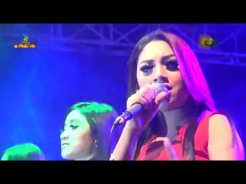 NEW REZA - BEGADANG D'Koplo Indonesia