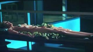 Sushi Samantha
