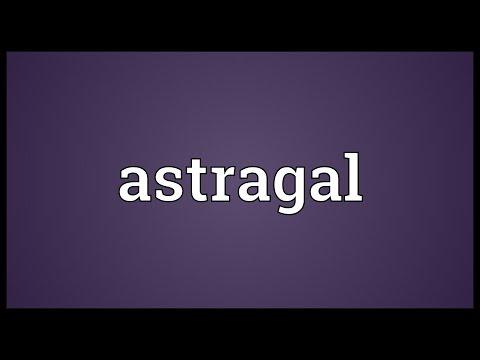 Header of astragal