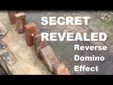 Thumbnail: SECRET REVEALED in Slow-Motion - How the Reverse Domino Brick Trick Works (Slow-Mo at 1:13)