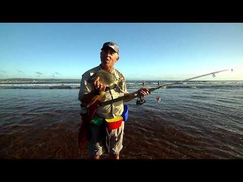 IFISH Rock Fishing