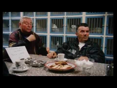 Documentaire: Schilderswijk 1996