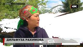 Жители предгорий Алматы любуются по-настоящему зимним пейзажем