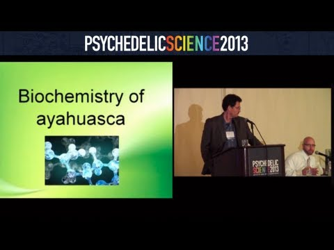 Ayahuasca's Mechanisms of Action in the Treatment of Addictions - Mitch Liester & James Prickett