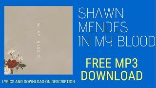 Shawn Mendes In My Blood Audio MP3 Free Download