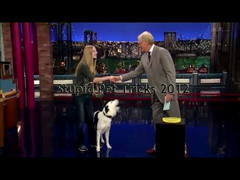 We Were On David Letterman.. Stupid Pet Tricks!!
