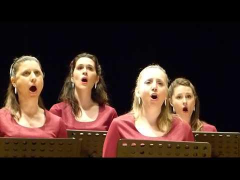 "ENSAMBLE VOCAL CAMARA XXI-LUIS CAPARRA: ""Laudes organi"", para coro y órgano-00067"