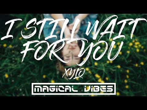 I Still Wait For You - XYLO (Lyrics/Lyrical Video)