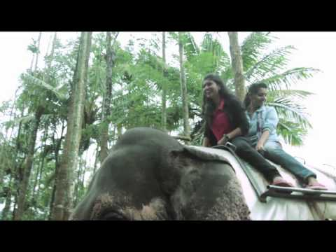 Kerala - A Travalogue on God's Own Country