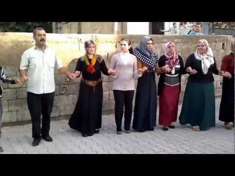 Süper Bir Kürtçe Delilo Oyun Havası HD Kalitesinden