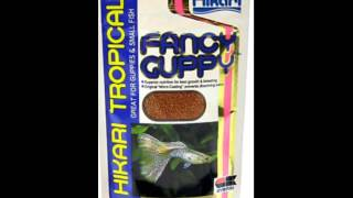 deep discount and offer on hikari fish products fancy guppies fish food