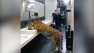 Các loài động vật được con người nuôi cực dễ thương,  ai muốn có 1 con k ???