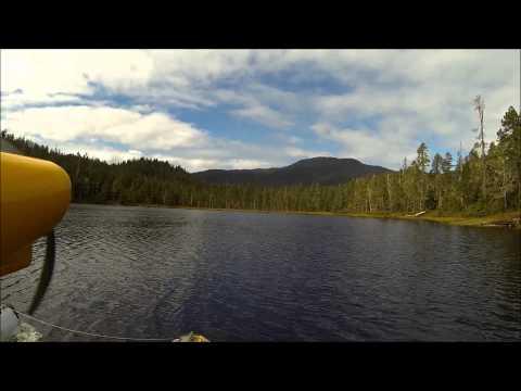 Adventure to Thom's Lake/ sockeye salmon and highbush cranberrys