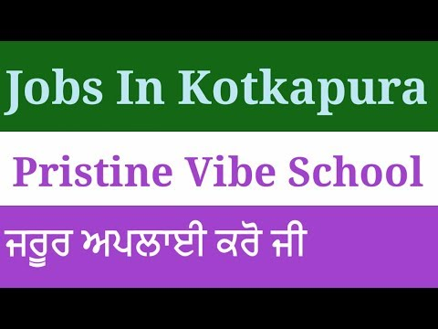 Jobs In Kotkapura Faridkot Punjab / Teaching Jobs In Kotkapura / Pristine Vibe School Kotkapura