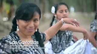 LAS GAVIOTITAS   NO SE PUEDE CONVIVIR  2013