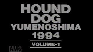 1994年8月27日 ハウンド・ドッグ夢の島ライブin夢の島の模様 6...