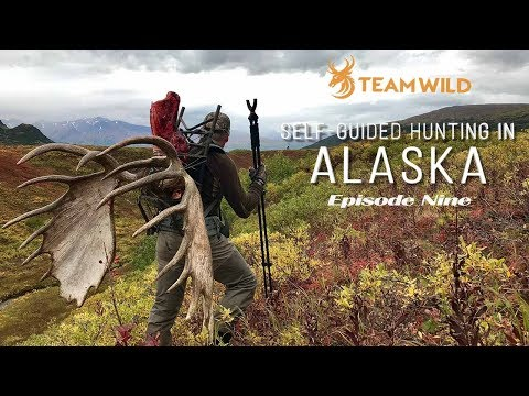 Self-guided Moose & Caribou Hunting In Alaska: Episode 9 - Epic Alaskan Moose Hunt