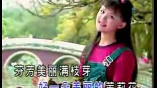 王雪晶 - 茉莉花