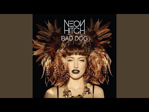 Bad Dog (Discotech Remix)