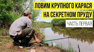 Рыбалка на поплавок Ловля крупного карася на секретном пруду