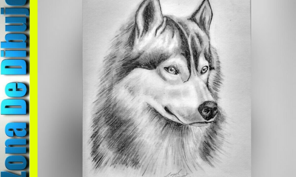 Zona de dibujo lobo lapices de carb n youtube for Imagenes de un estanque para dibujar