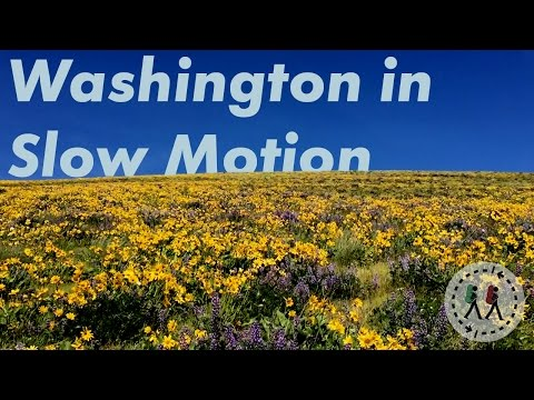 Natural Beauty of Washington State | Slow Motion