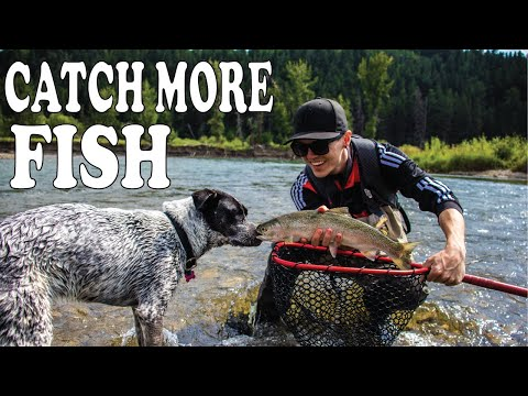 How To Catch Fish On The Bow River (Tips & Tricks) - Bow River Fishing Report
