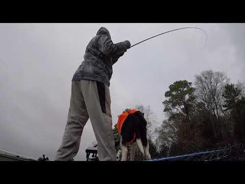 Lake Tyler Bass