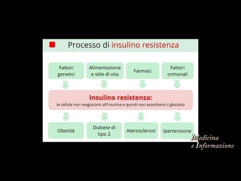 pre-diabete-e-resistenza-insulinica:-cosa-sono-e-come-si-combattono-a-tavola