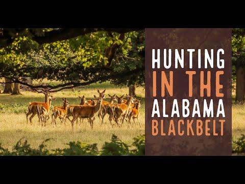 Hunting Alabama's Blackbelt