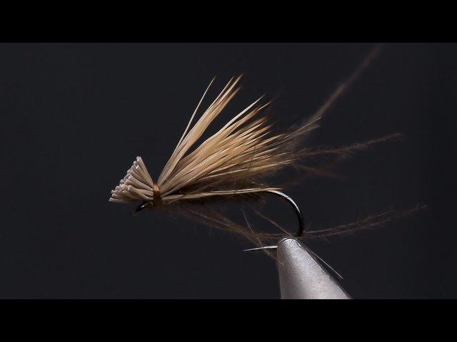 CDC 'n Elk SBS (Video)