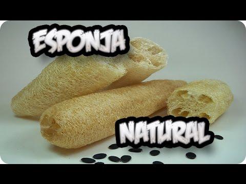 Como hacer una esponja natural o vegetal con luffa - Como hacer ambientadores naturales ...
