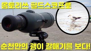 고성능 망원경(옵토리쓰 Compact G80)으로 촬영…