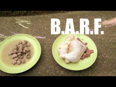 Raw Feeding: RAW vs B.A.R.F. Greyhound