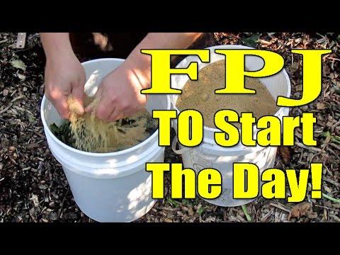 Easy Homemade Fertilizer Using Weeds