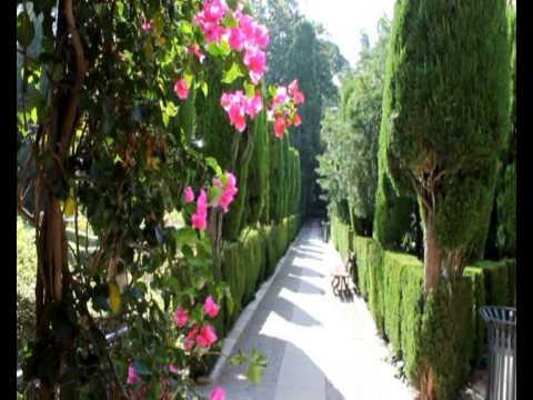 Videoblog 1 global garden 3d jardines de monforte youtube for Jardines de monforte