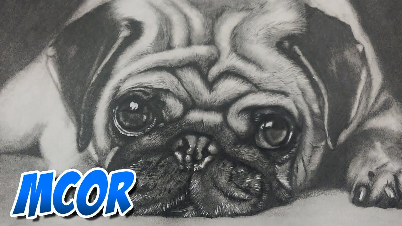 Dibujando un Perrito Pug - YouTube