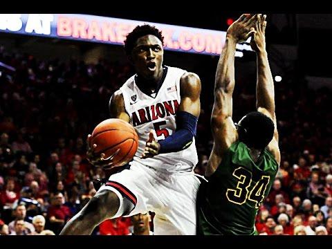 Stanley Johnson - Arizona Highlights 2015