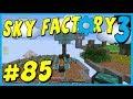Data Play's - Sky Factory 3 - #85 - Menril Saplings and The Mega Torch!