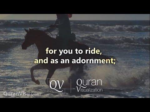 Surah An-Nahl   Verse 1-9   Mishary Rashid Al Afasy   Quran Visualization