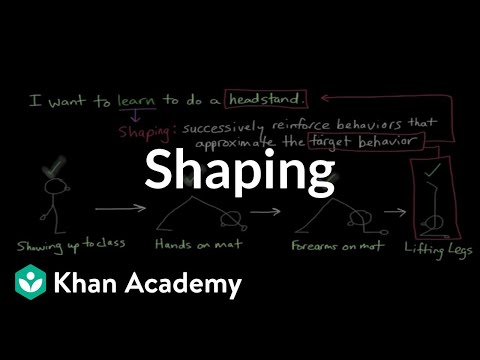 Operant conditioning: Shaping | Behavior | MCAT | Khan Academy