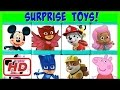 PLUS Disney & Nick Jr  Toy Surprise Blind Boxes! Paw Patrol, PJ Masks & Mickey Mouse Clubhouse