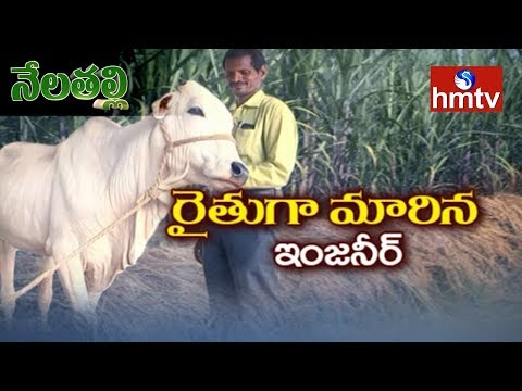 Engineer Success Story in Natural Farming | Nela Talli | Tel