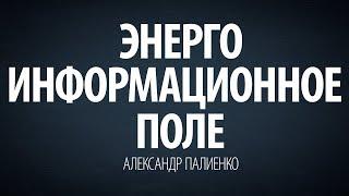Энергоинформационное поле. Александр Палиенко.