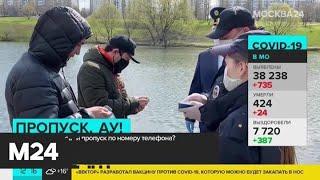Фото Как найти цифровой пропуск по номеру телефона - Москва 24
