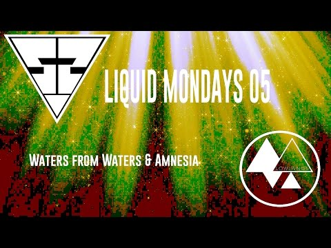 Liquid Mondays 05 Waters from Waters&Amnesia [Secret Society Records ]