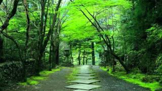 Ryuichi Sakamoto - Forbidden Colours (Original)