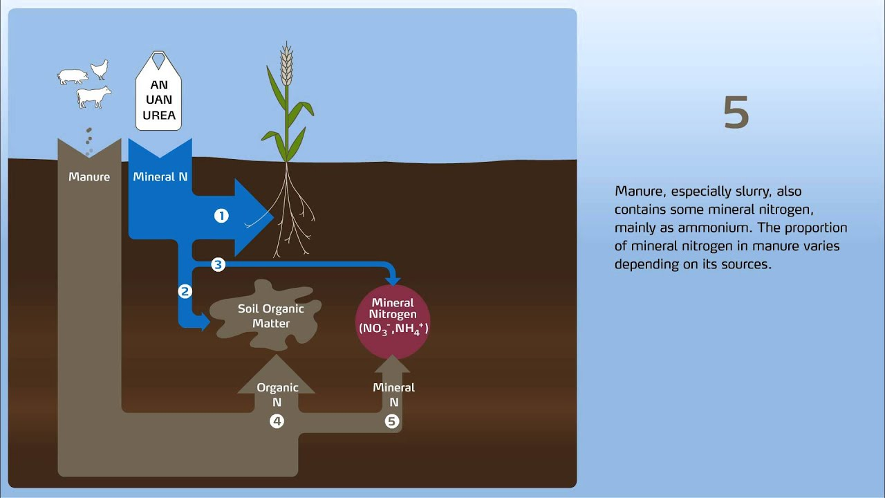 How to control nitrogen leaching in the soil part 2 for 4 parts of soil