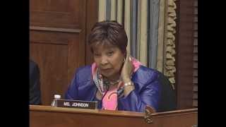 2013.12.04 - Ranking Member Eddie Bernice Johnson (D-TX) - Questions to the Witness Panel